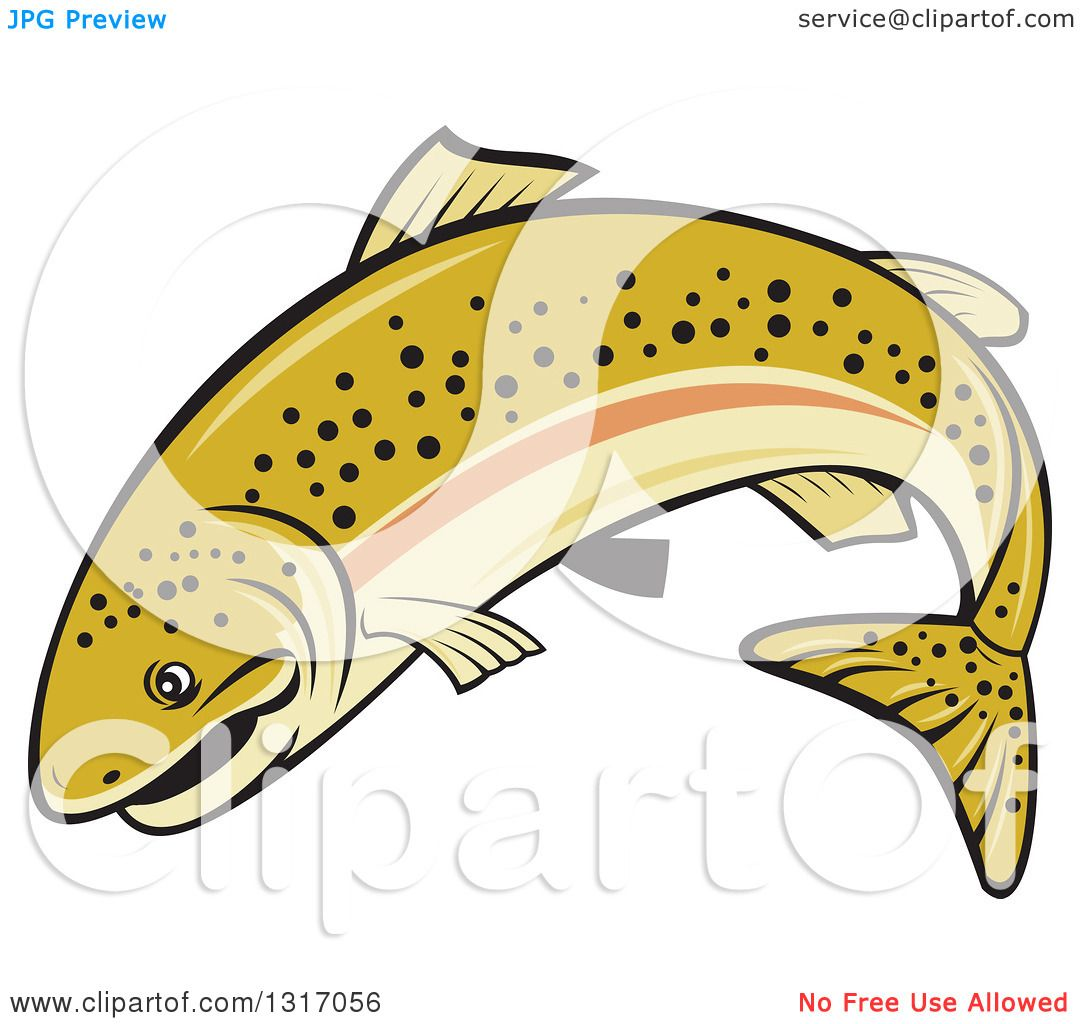 1080x1024 Clipart Of A Cartoon Leaping Rainbow Trout Fish
