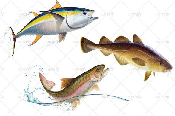 580x386 7 Best Marine Life Images On Art Pics, Art Series