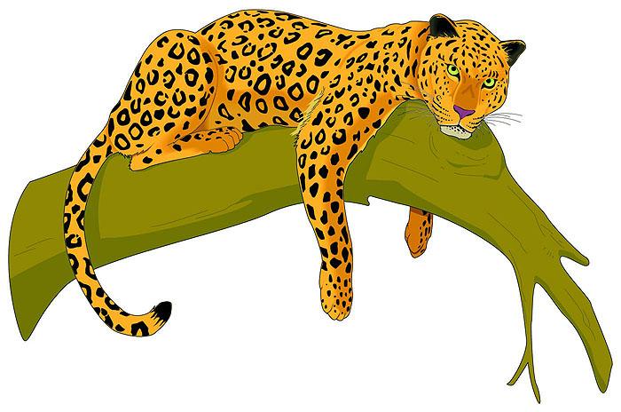 700x464 Rainforest Jaguar Clipart