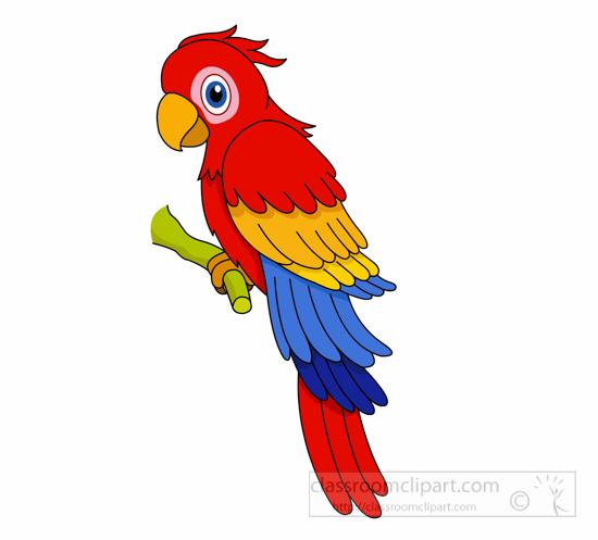 550x497 Jungle Parrot Clipart Amp Jungle Parrot Clip Art Images