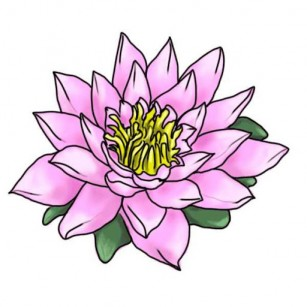 307x307 Exotic Flowers Drawing
