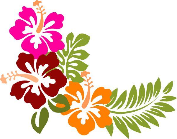 600x473 Hibiscus Clipart Rainforest Flower