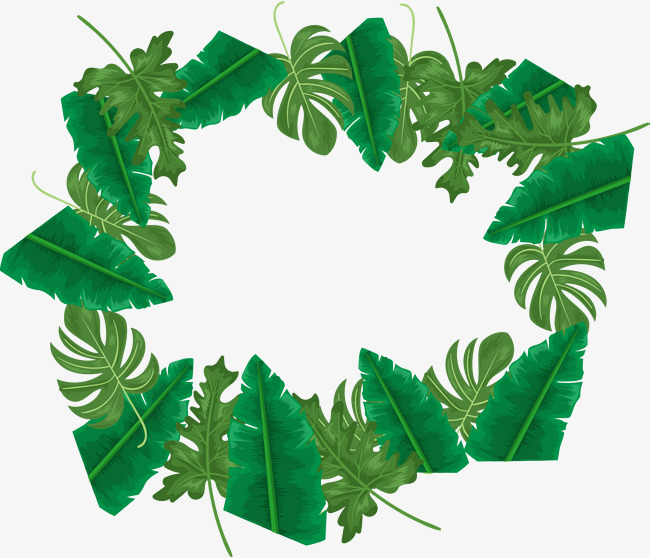 650x558 Amazon Rainforest Png Images Vectors And Psd Files Free