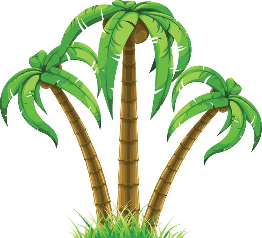 863x786 Jungle Clipart Palm Tree