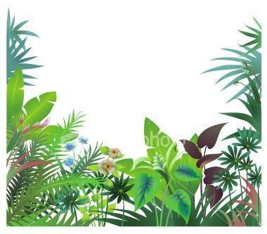 380x333 Elegant Rainforest Clip Art