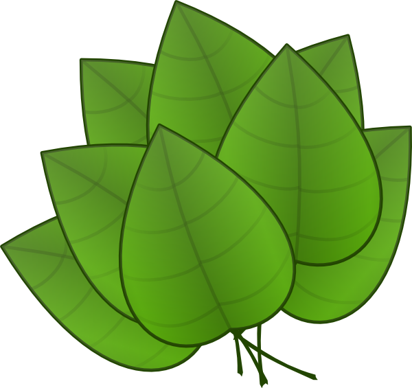 600x565 Free Jungle Leaves Clipart Preschool Jungle Leaves
