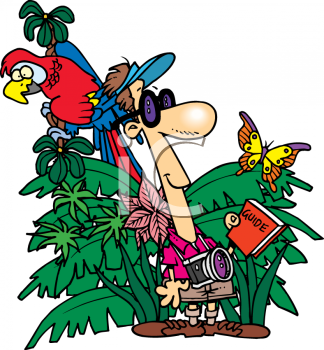 324x350 New Jungle Clip Art Jungle