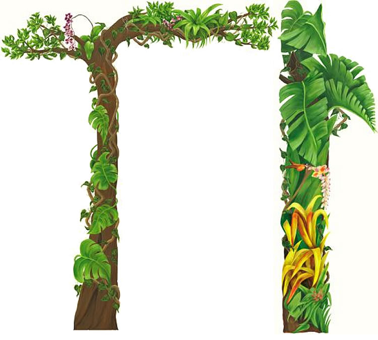 750x675 Best Jungle Clipart