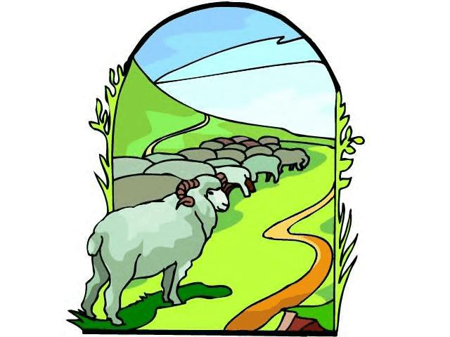 640x480 The Ram In Bush Clipart
