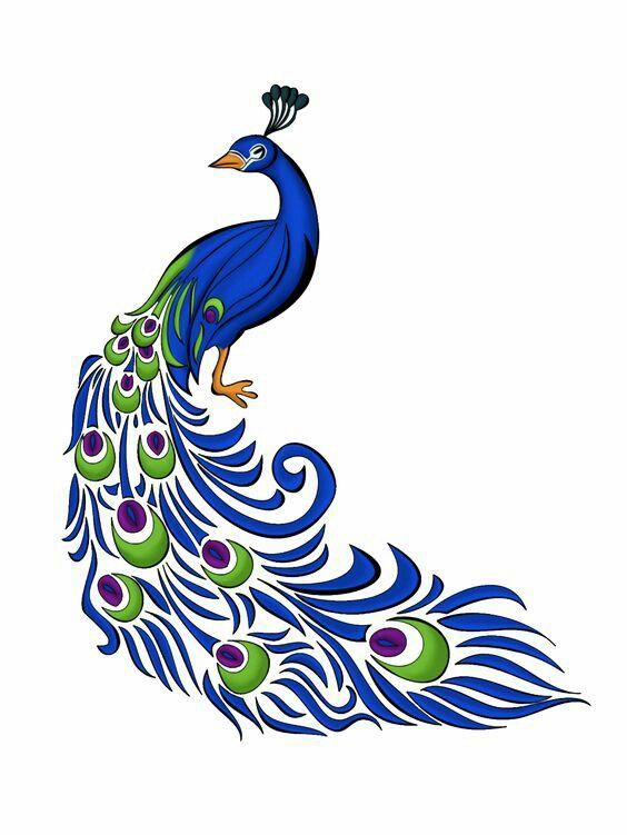 564x751 Pin By Kowsi On Kowsi Peacock, Peacock Painting