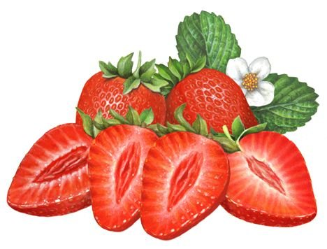 468x356 30 Inspirational Clipart Strawberry Png