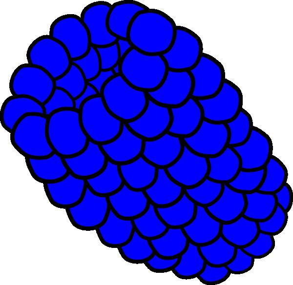 600x584 Blue Raspberry Png, Svg Clip Art For Web