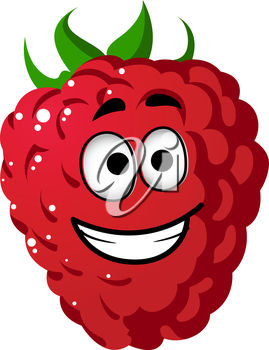 269x350 Clipart Illustration Of A Cartoon Raspberry