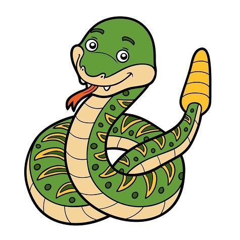 475x475 Rattlesnake Clipart Mamba Snake