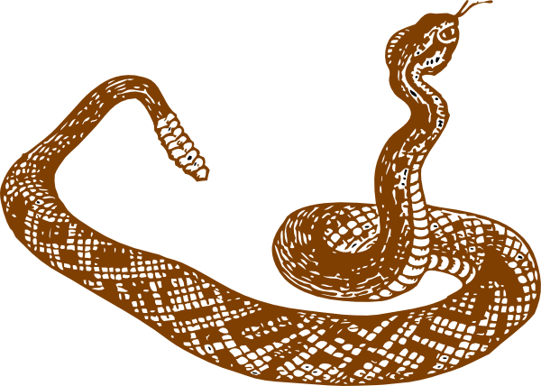 600x428 Snake Reading Cliparts