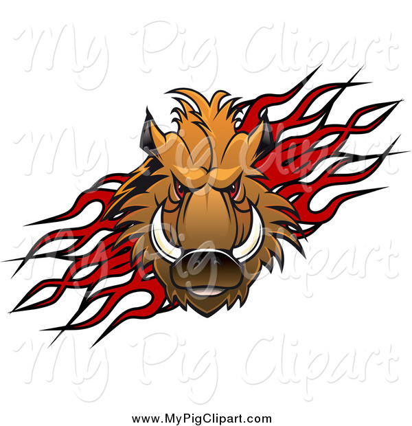 600x620 Swine Clipart Of A Razorback Boar Pig Over Flames By Vector