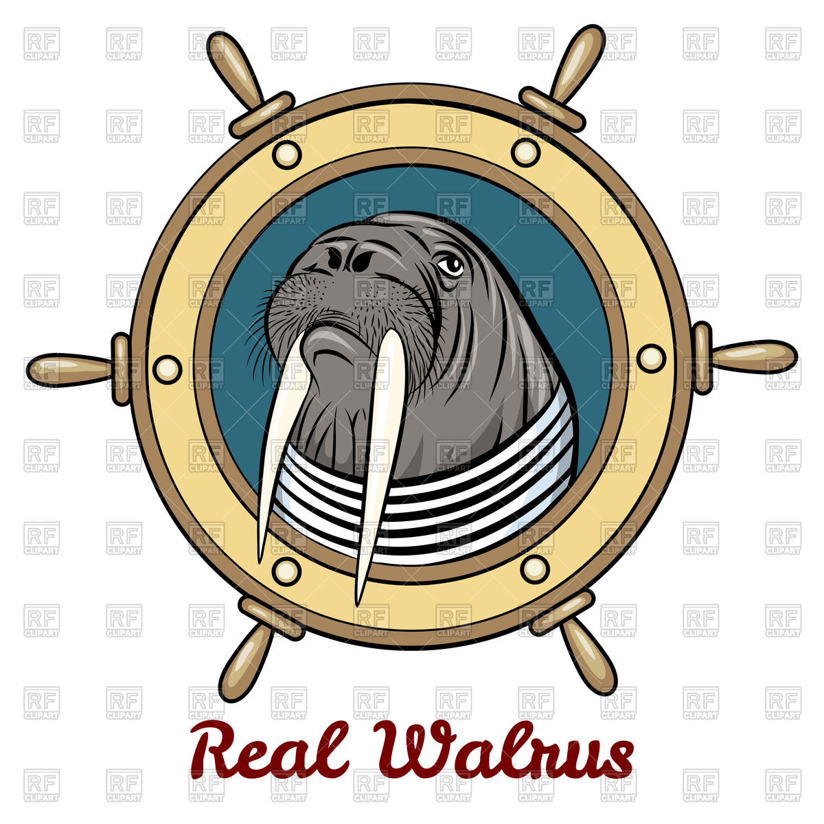 1200x1200 Portrait Of Walrus In Seaman Shirt Inside Steering Wheel Royalty