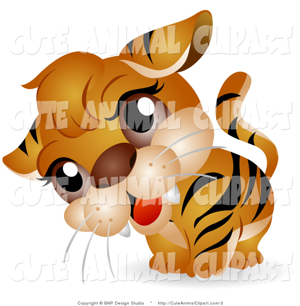 1024x1044 Real Tiger Face Clip Art