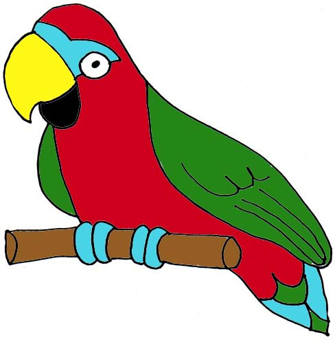 488x498 Real Parrot Clipart