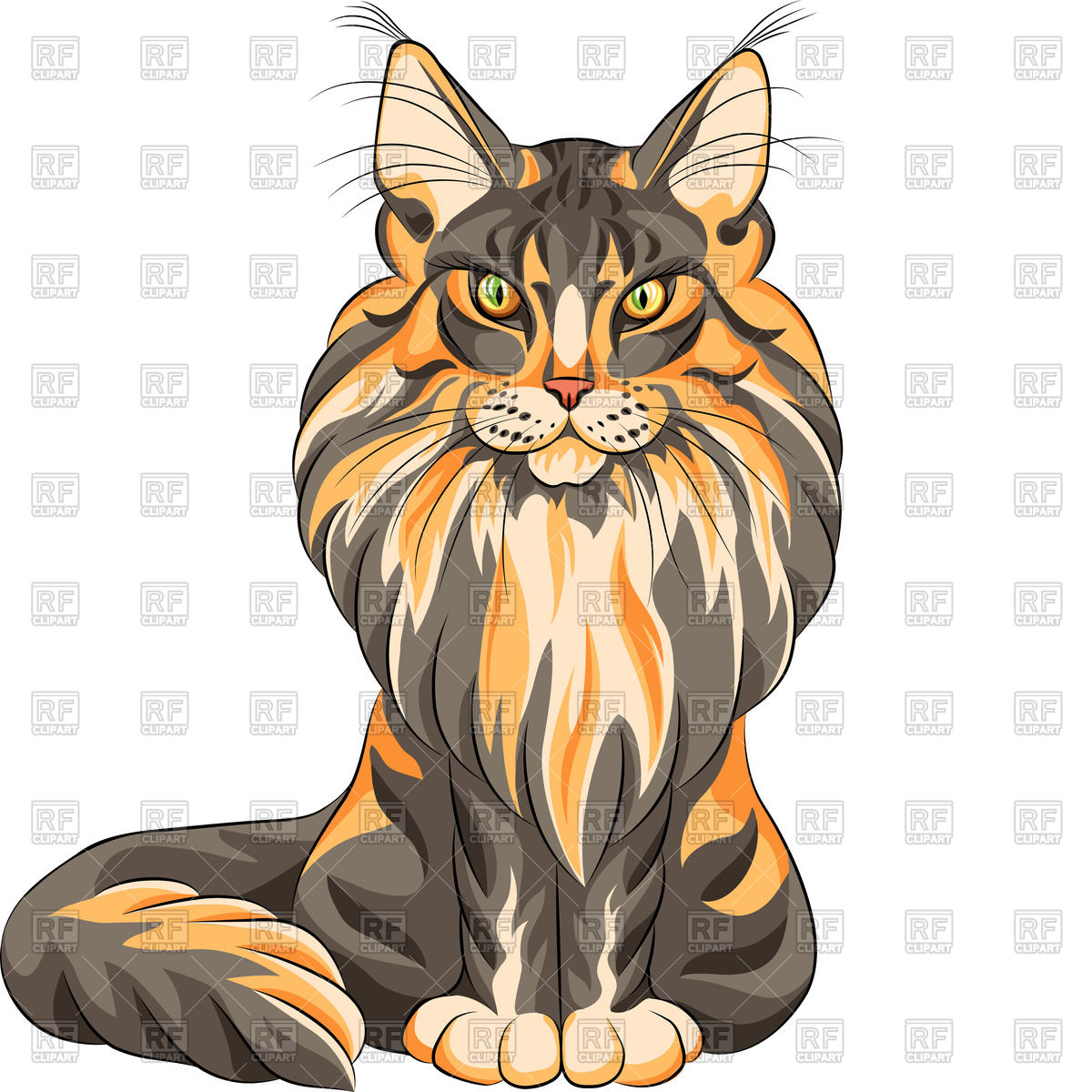 1200x1200 Sketch Of Serious Red Fluffy Maine Coon (American Longhair) Cat