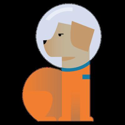 400x400 Spacedog.xyz