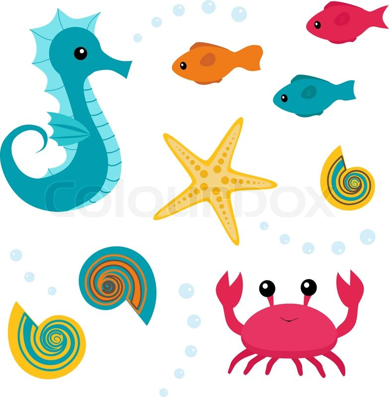 784x800 Sea Life Clipart Real Free Collection Download And Share Sea