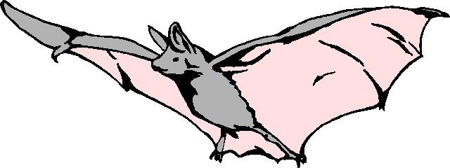 640x240 Bat Clipart