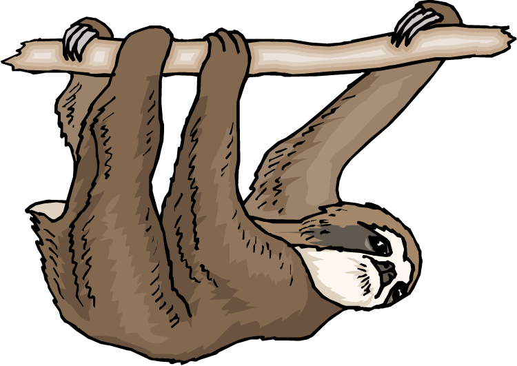 750x531 Sloth Clip Art Amp Look At Sloth Clip Art Clip Art Images