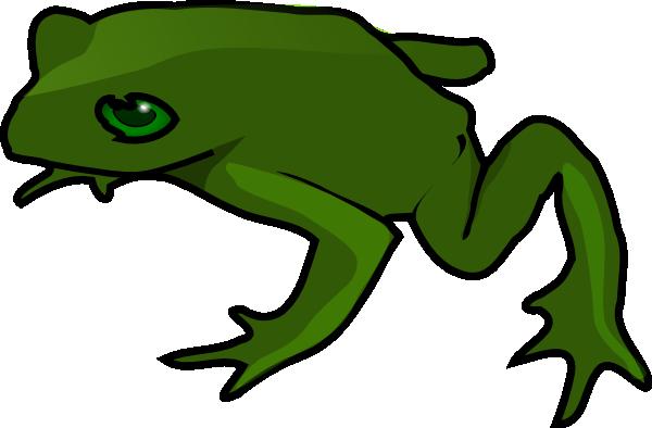 600x394 Amphibian Clipart Realistic Animal