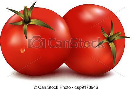 450x308 Tomatoes Isolated On White Background. Photo Realistic Clip Art
