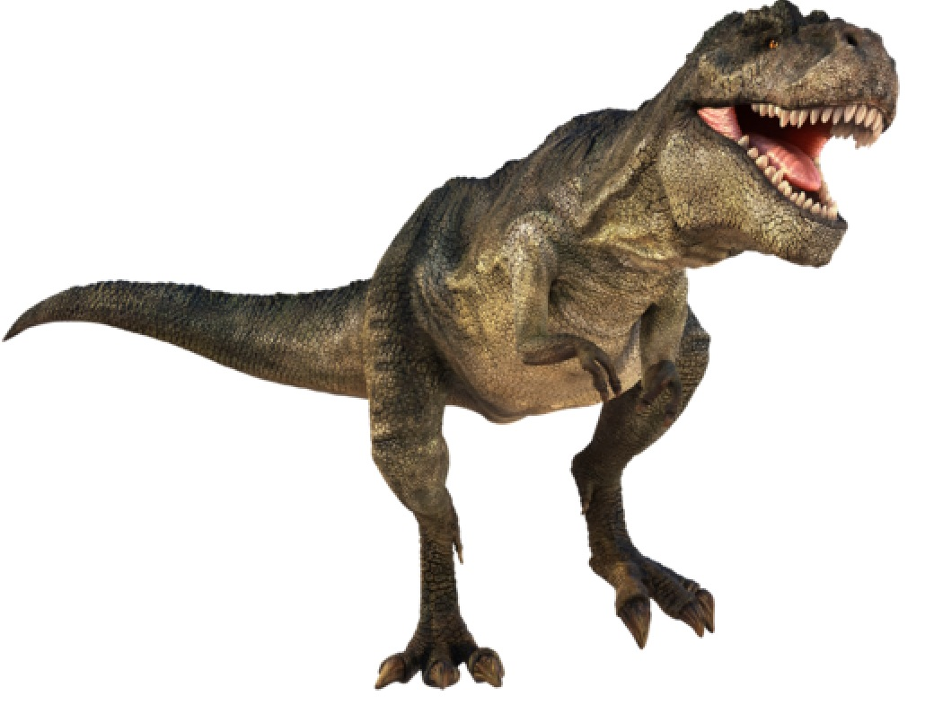 1030x785 Dino250 On Scratch