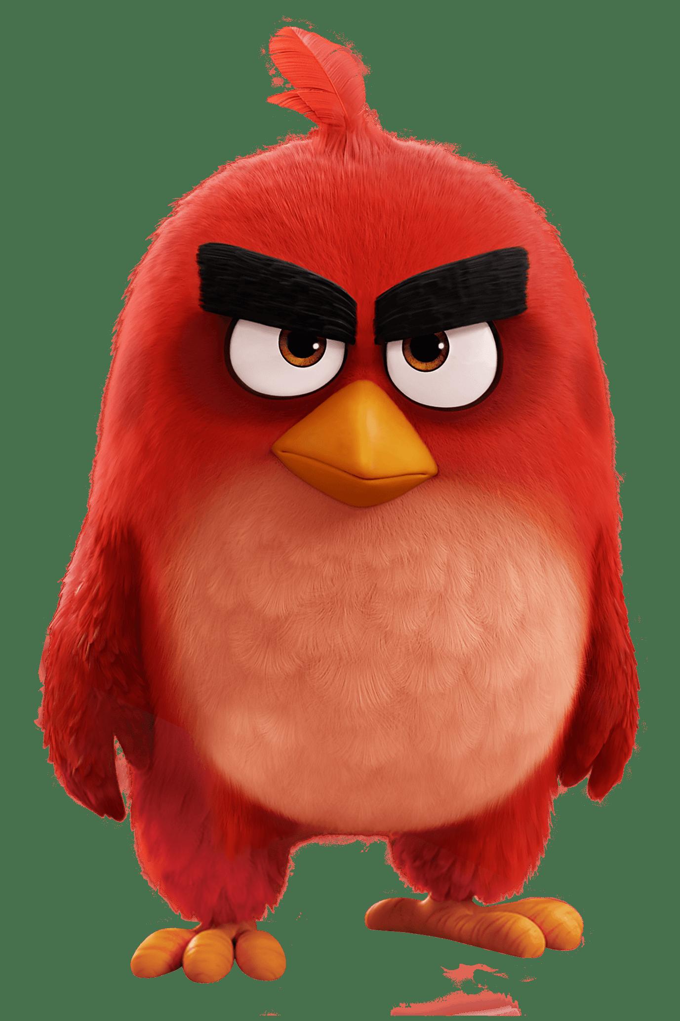 1377x2068 Angry Birds Movie Red Bird Teaching Art 101 Angry