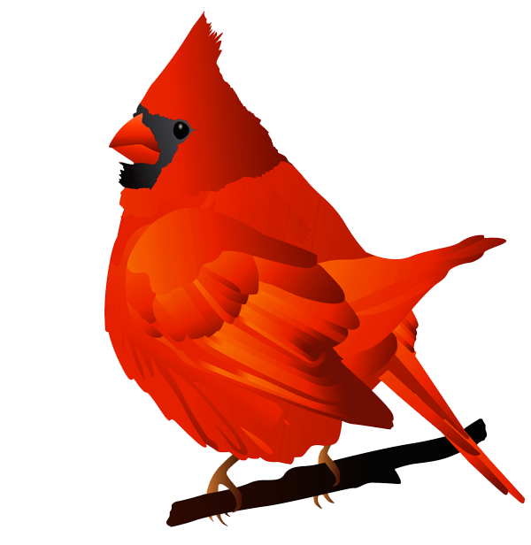 600x616 Collection Of Free Christmas Cardinal Clipart High Quality