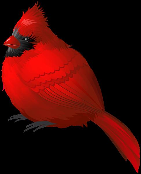 487x600 Clip Art Cardinal Red Bird