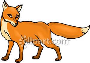 300x210 Red Fox Clip Art Clipart Panda