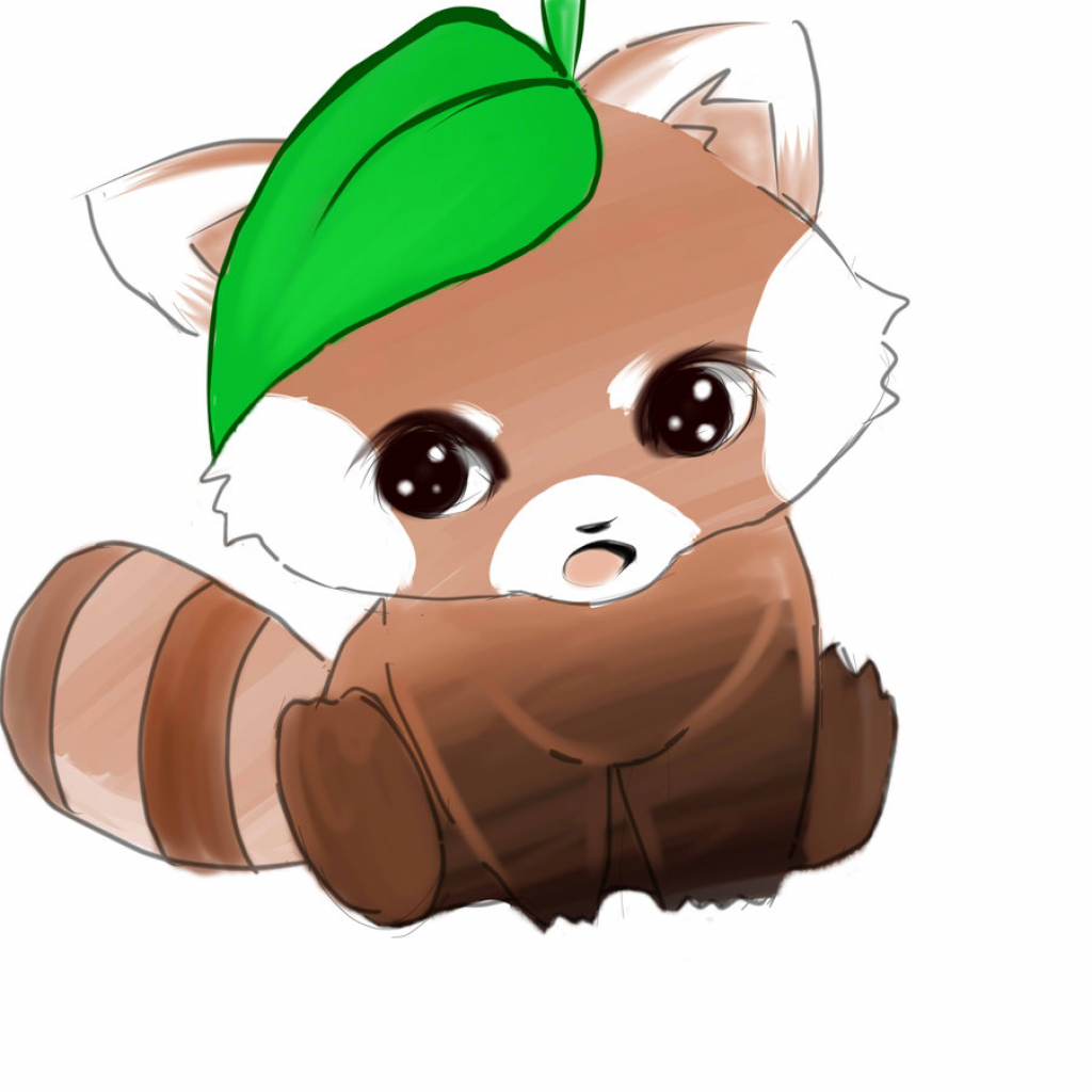 1024x1024 Red Panda Drawing Red Panda Drawing Clipart Panda Free Clipart