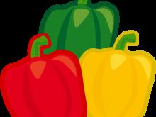 220x165 Pepper Clipart Pepper Clip Art