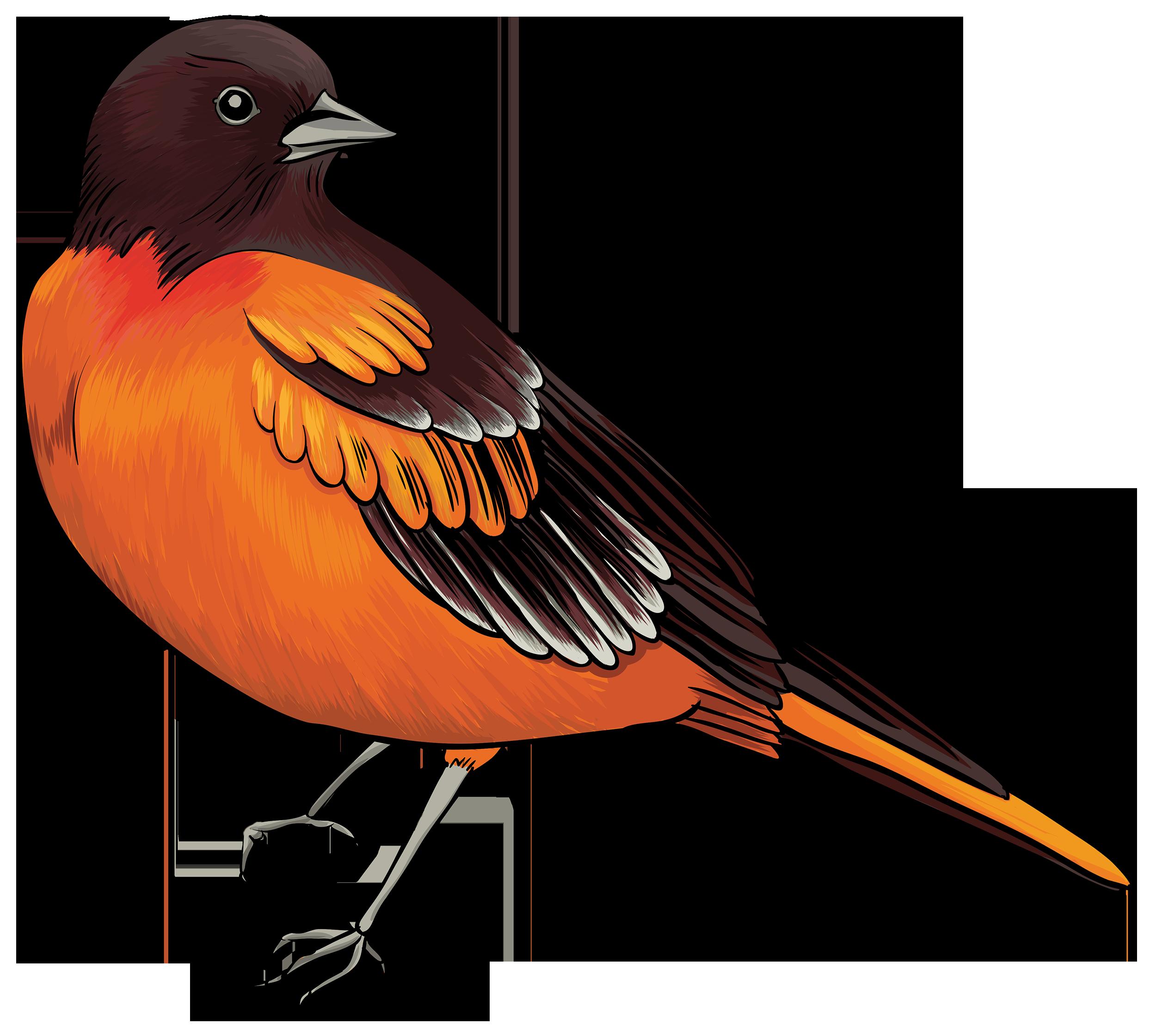 2500x2241 Bird Clip Art