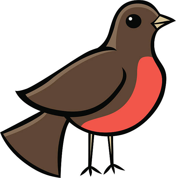 607x612 Collection Of Red Robin Clipart High Quality, Free Cliparts
