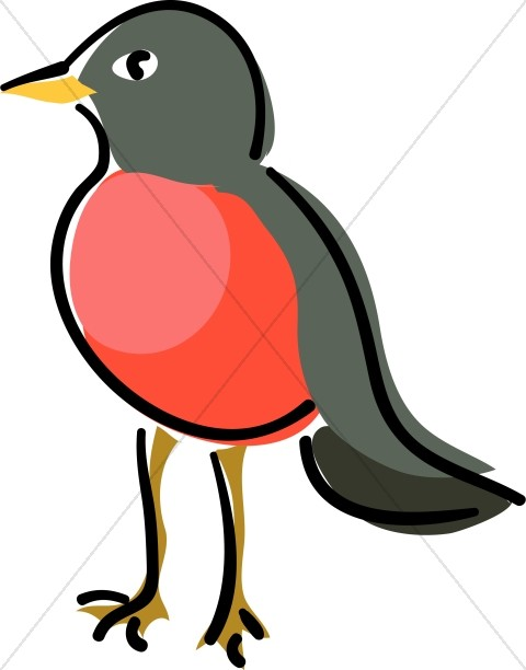 480x612 Red Robin Standing Wildlife Clipart