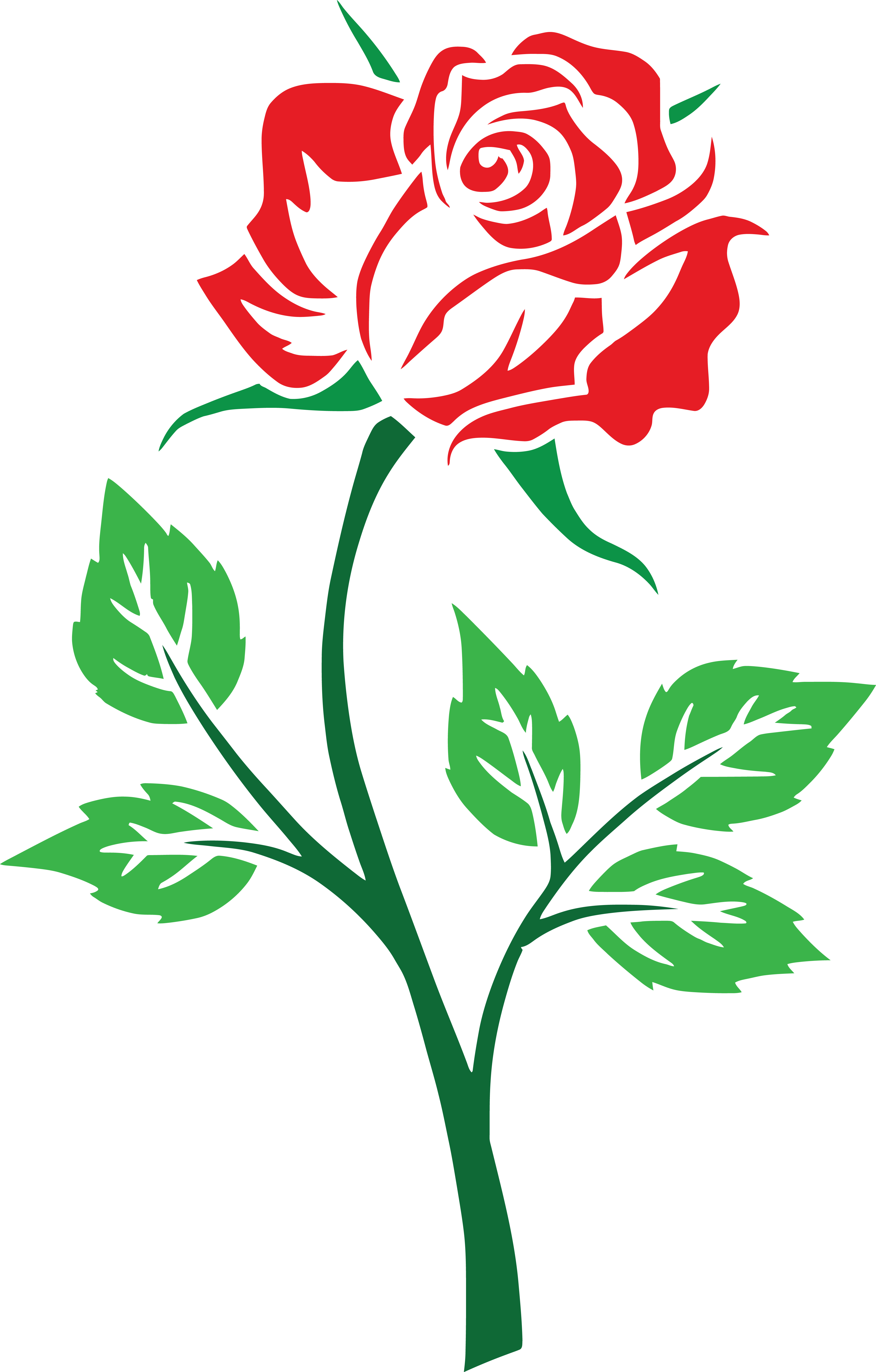4000x6264 Free Clipart Of A Red Rose