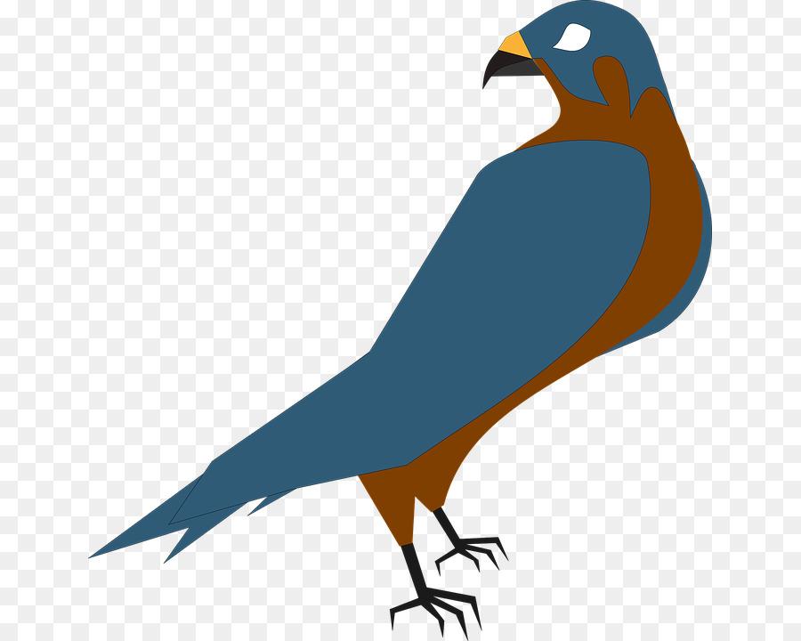 900x720 Hawk Free Content Clip Art