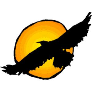 300x300 Cartoon Hawk Clipart