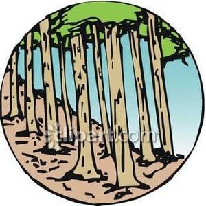 300x300 Forest Clip Art Clipart Panda
