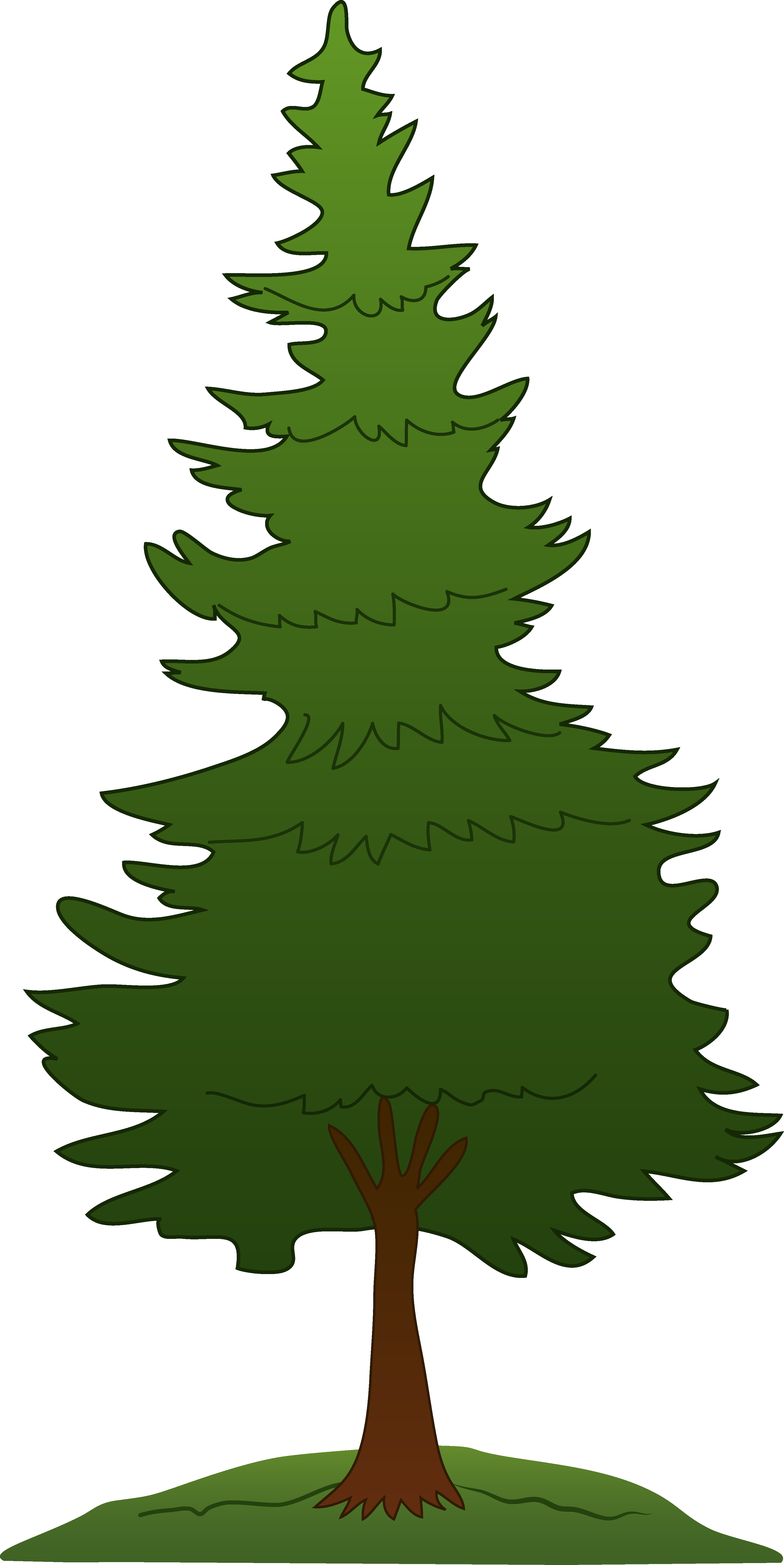 3256x6498 Gallery Pine Tree Line Art,