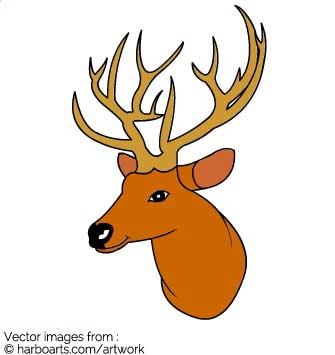 335x355 Download Deer Head