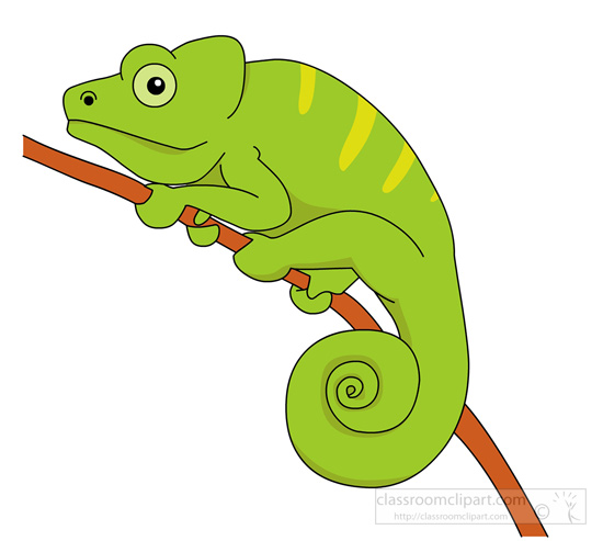 550x493 Reptiles Chameleon Clipart Clipart