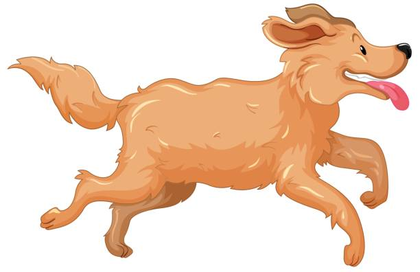 Retriever Clipart