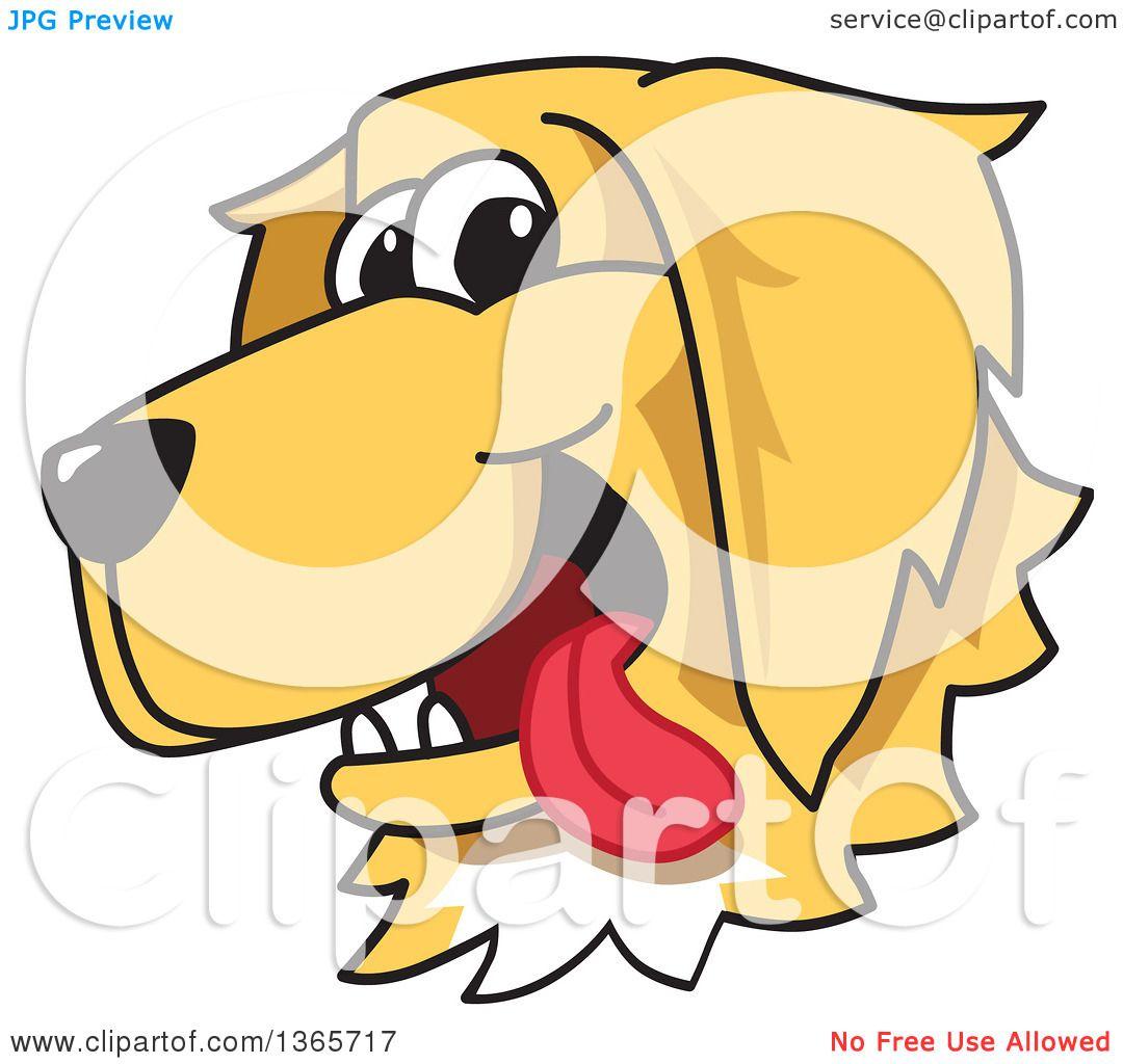 1080x1024 Clipart Of A Cartoon Happy Golden Retriever Dog Face
