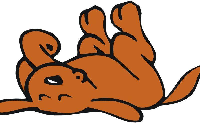 800x494 Very Attractive Sleeping Dog Clip Art